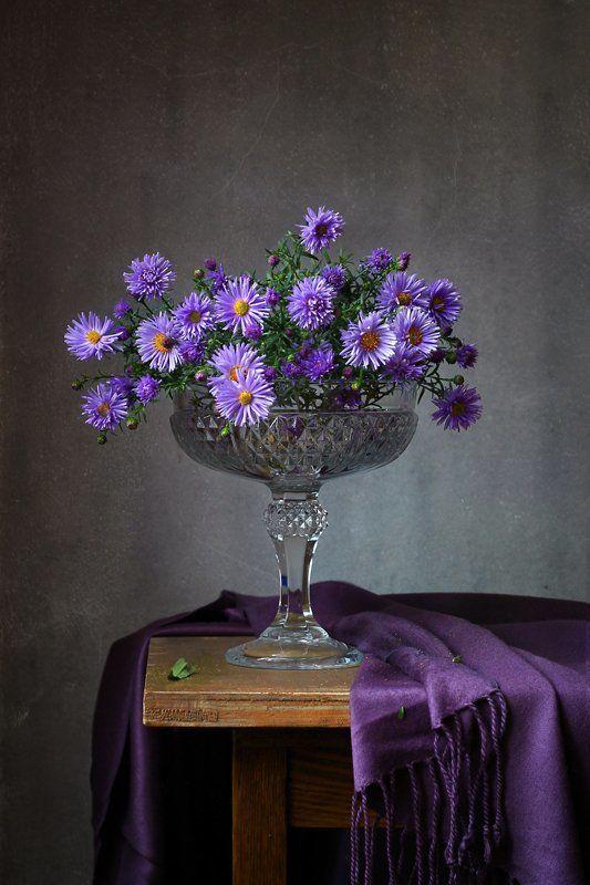 натюрморт, осень, цветы, сентябрины, чашка, бабушка Сентябринкиphoto preview