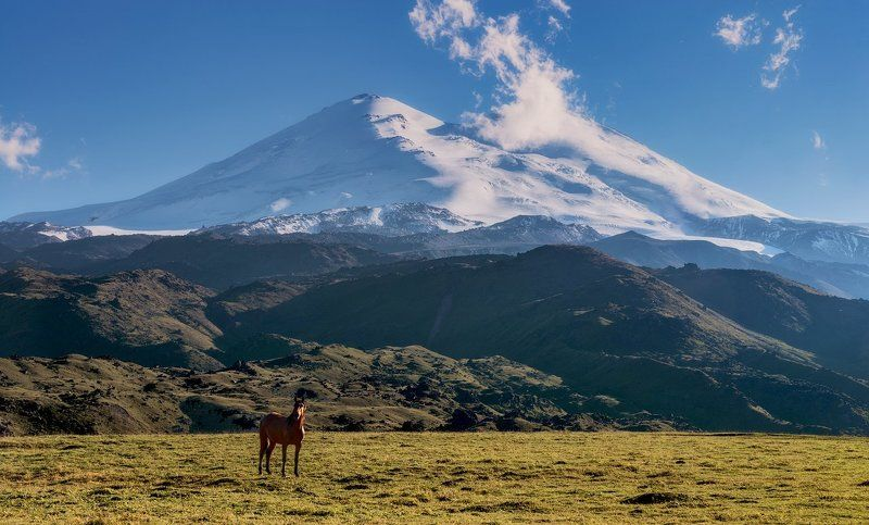 Два символа Кавказаphoto preview