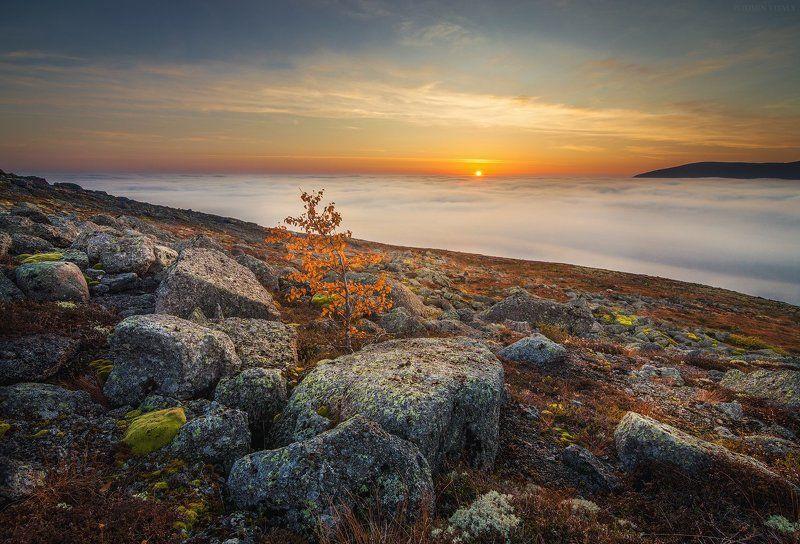 пейзаж,закат,айкуайвенчорр,хибины,свет,осень,панорама,небо,дерево,перспектива,солнце,камни,туман  Айкуайвенчорр на закатеphoto preview