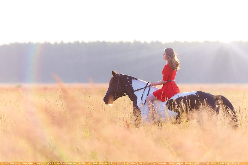 horse #михаилсеменов #фотографярославль #сертификат #подарок #фотослошадкой #аквалайт #свет #красота #модель #наездница #ночь #эквитерра Тишинаphoto preview
