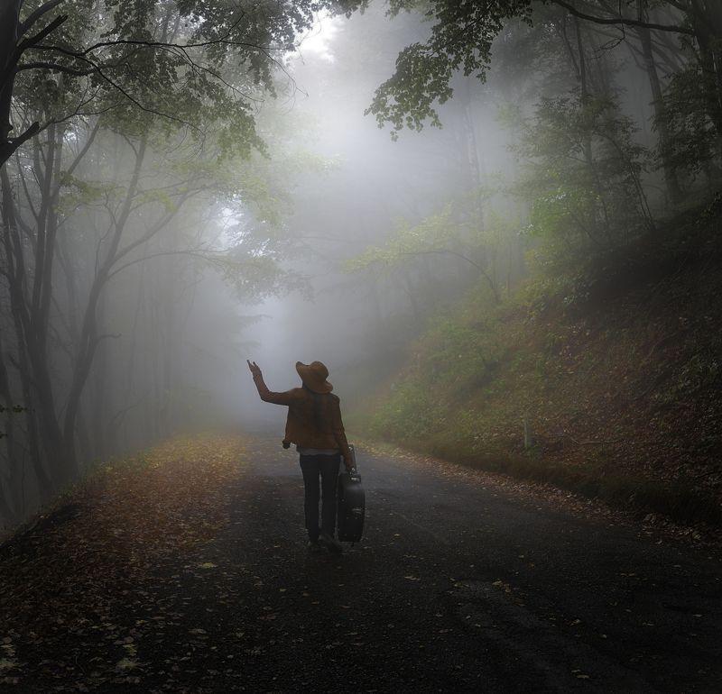пилигрим, лес,туман, гитара,музыкант,осень Пилигримphoto preview