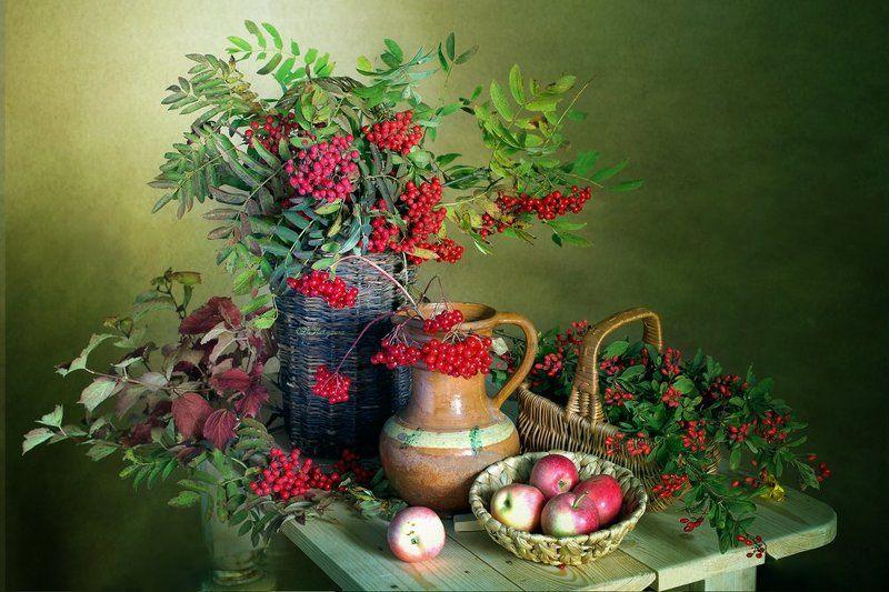 ягода ,рябина ,калина ,барбарис ,осень ,вера павлухина, Ягод красные рубиныphoto preview