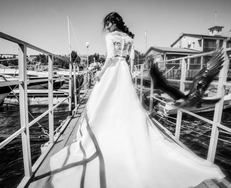 девушка,невеста,свадьба,птица,тень Hélènephoto preview