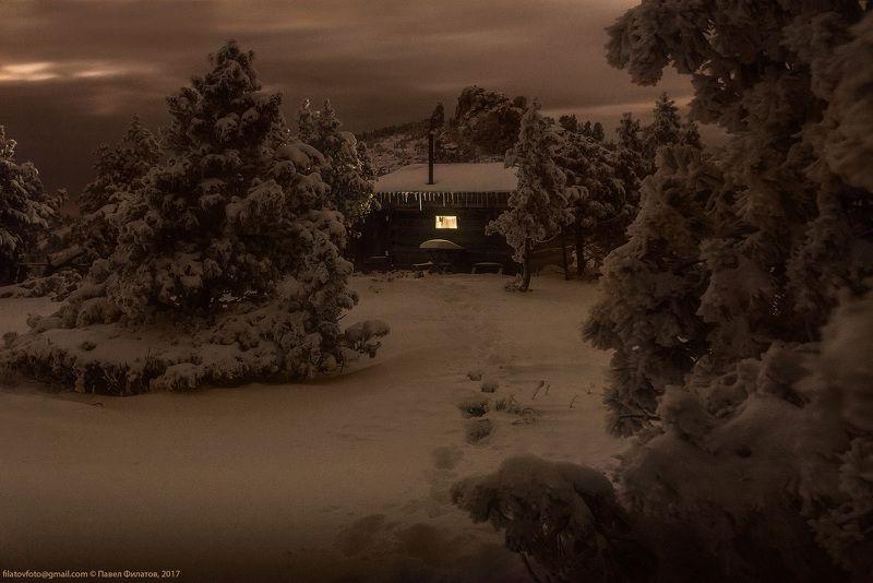 алтай, сибирь, siberia, тигирекский заповедник, тигирек, tigirek, altai, ночь, зима. снег, кедры Мышка в штанинеphoto preview