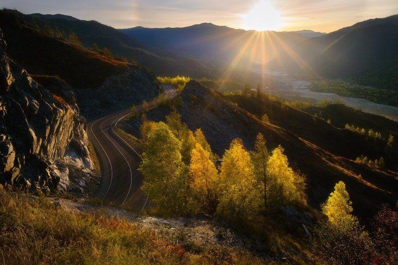 алтай, горы, осень, чике-таман, рассвет, лиственницы Чике-Таманphoto preview
