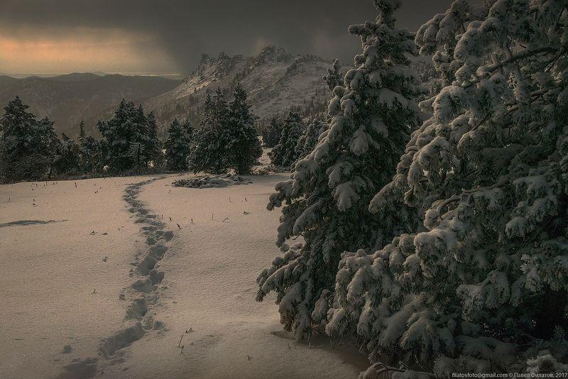 алтай, сибирь, siberia, лето, тигирек, тигирекский заповедник, ночь, кедры, снег Кедровый Шкильphoto preview