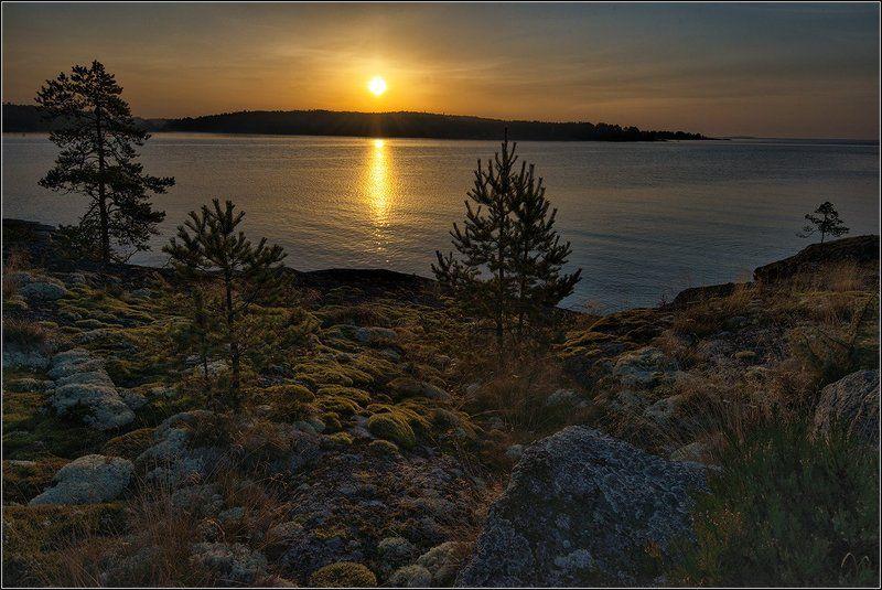 карелия, ладожское озеро, утро, солнце Встречая рассветphoto preview