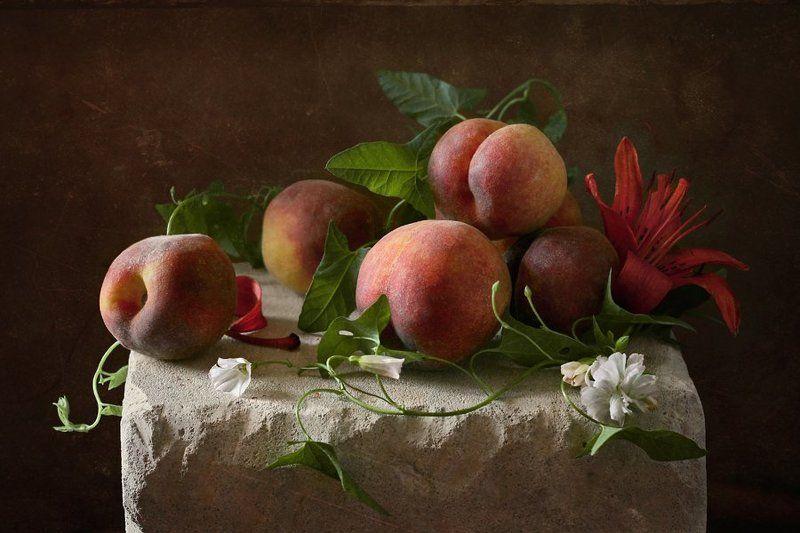 натюрморт, персики, фрукты, вьюнок Персикиphoto preview