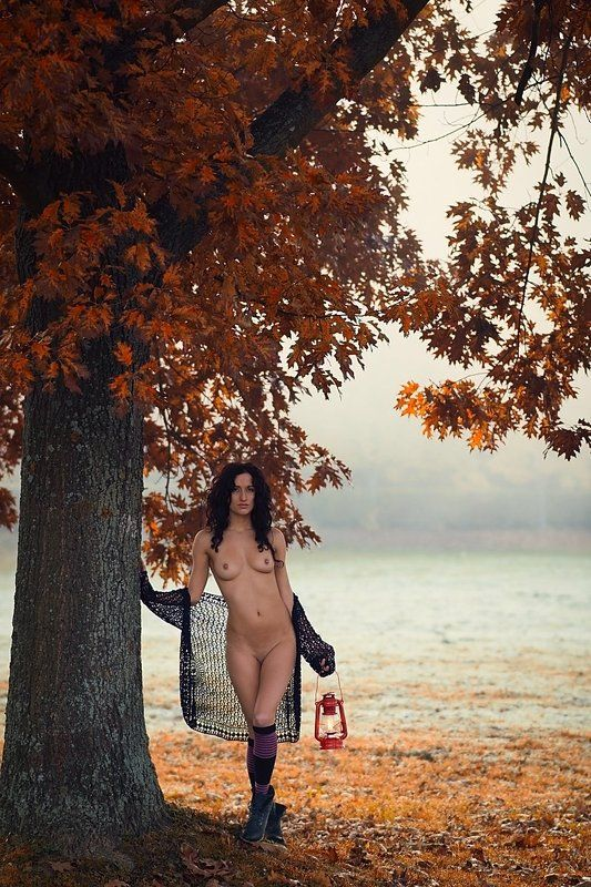 model, nude, naked, glamour, woman, female, colour, autumn, nature, body, sexy, sensual, natural light, curves, portrait, erotica, morning, fine art, fashion nude, fashion, Autumnphoto preview