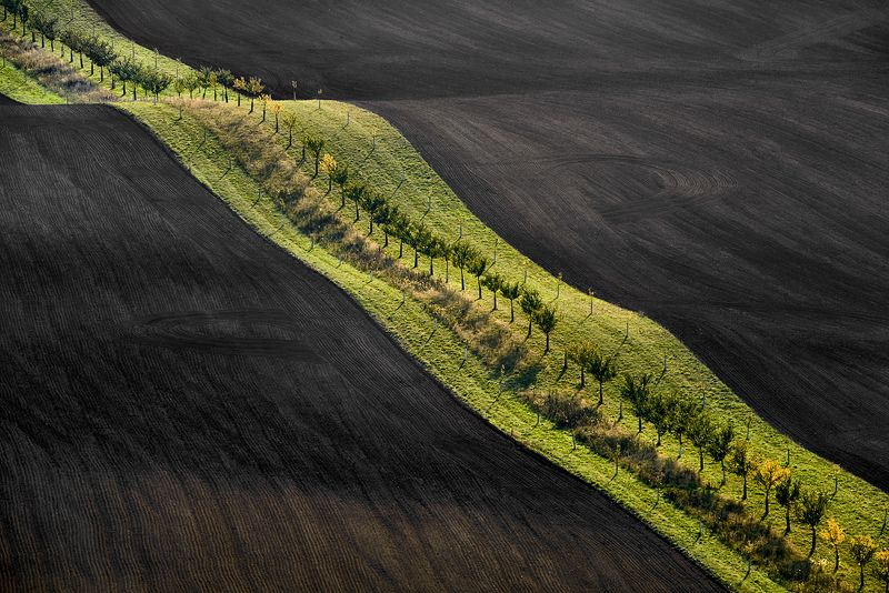 Moravia, Czech Republic,  Kyjov  Moravian fields photo preview