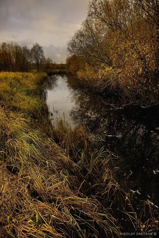 пейзаж  природа музыка Лесная речка. 7 окт 2017photo preview