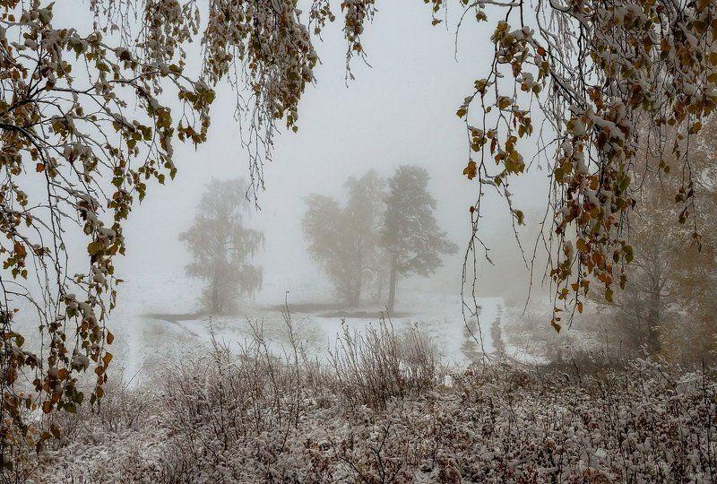 Грустная осень.photo preview