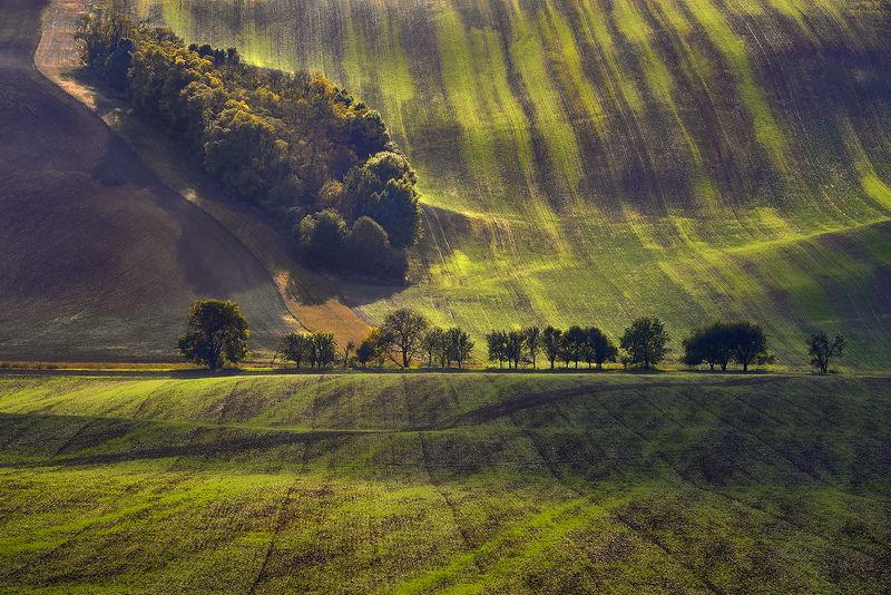 Moravia, Czech Republic,  Kyjov Green Moraviaphoto preview