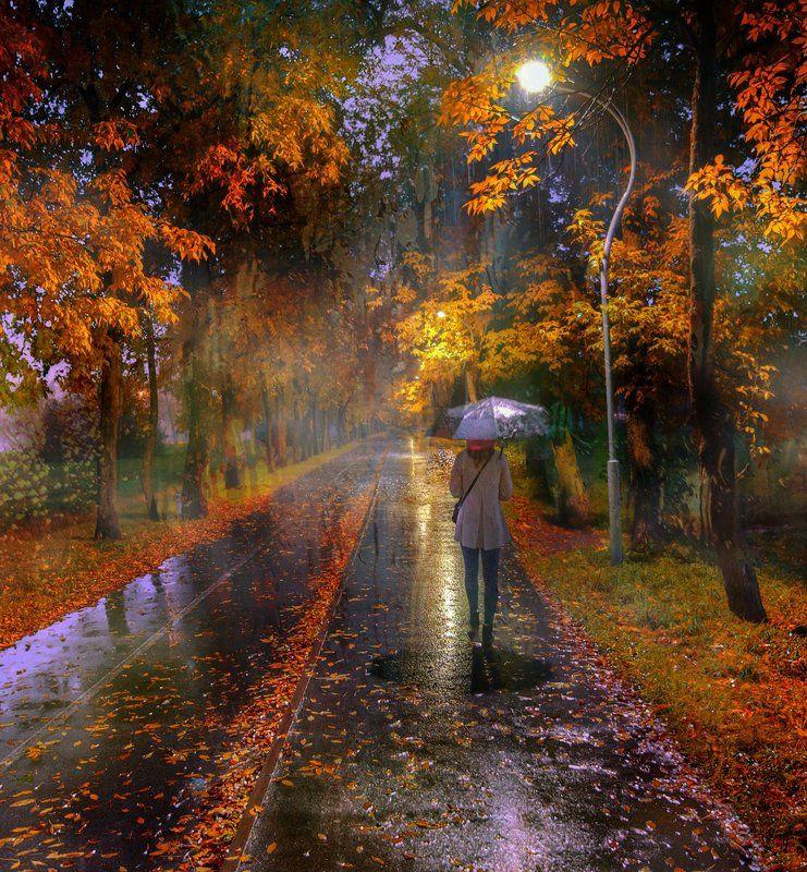 санкт-петербург дождь в осеннем парке...photo preview