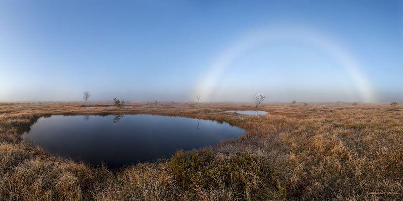 ленинградская область, ленобласть, карельский перешеек, болото, радуга, туман \