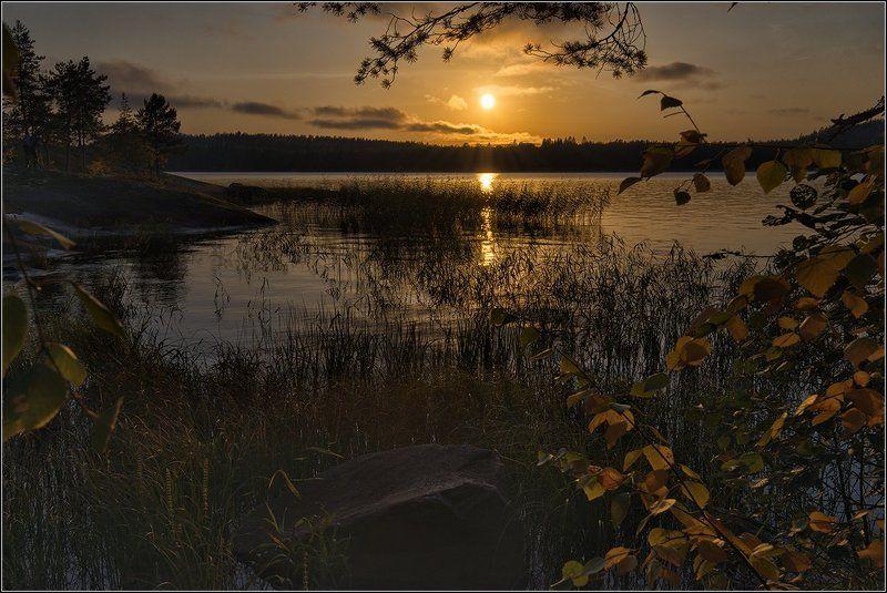 карелия, ладожское озеро, вечер. солнце, закат, дорожка, деревья Вечер на островеphoto preview