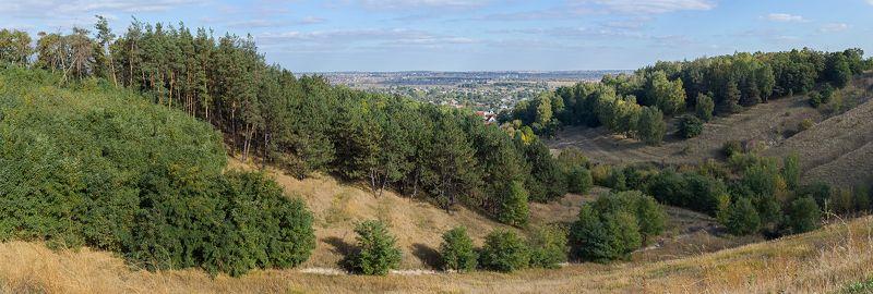 поле,деревья,склон,провода,сено,листва,дома,крыша,ветки,овраг,лес ***photo preview