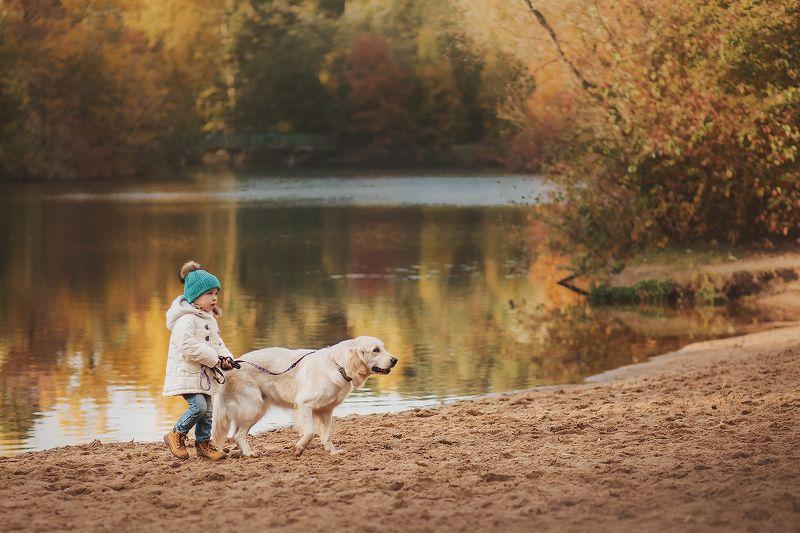 золотистый ретривер, фотосессия с золотистым ретривером, ребенок и золоистый ретривер, девочка с собакой Соня и Рейчелphoto preview