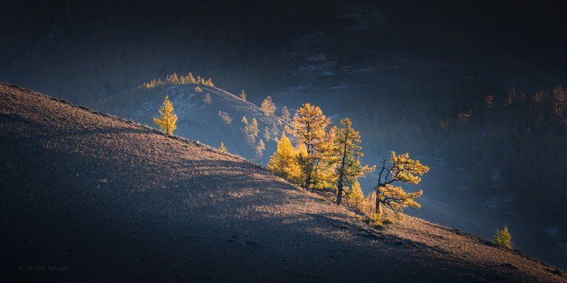 пейзаж, алтай, осень Алтайская осень...photo preview