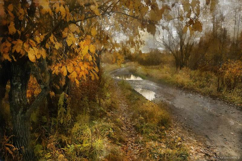 пейзаж, , природа, музыка ива. дорога. осень. 2017photo preview