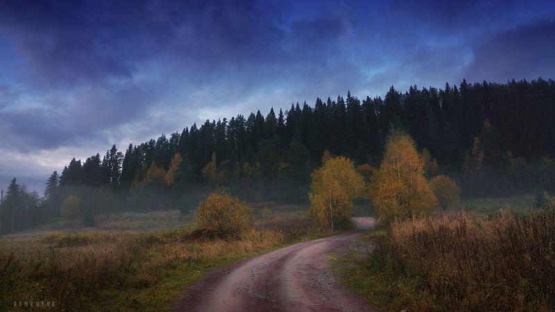 карелия, туман, лес, дорога, осень, сумерки. Про таинственный лес.photo preview