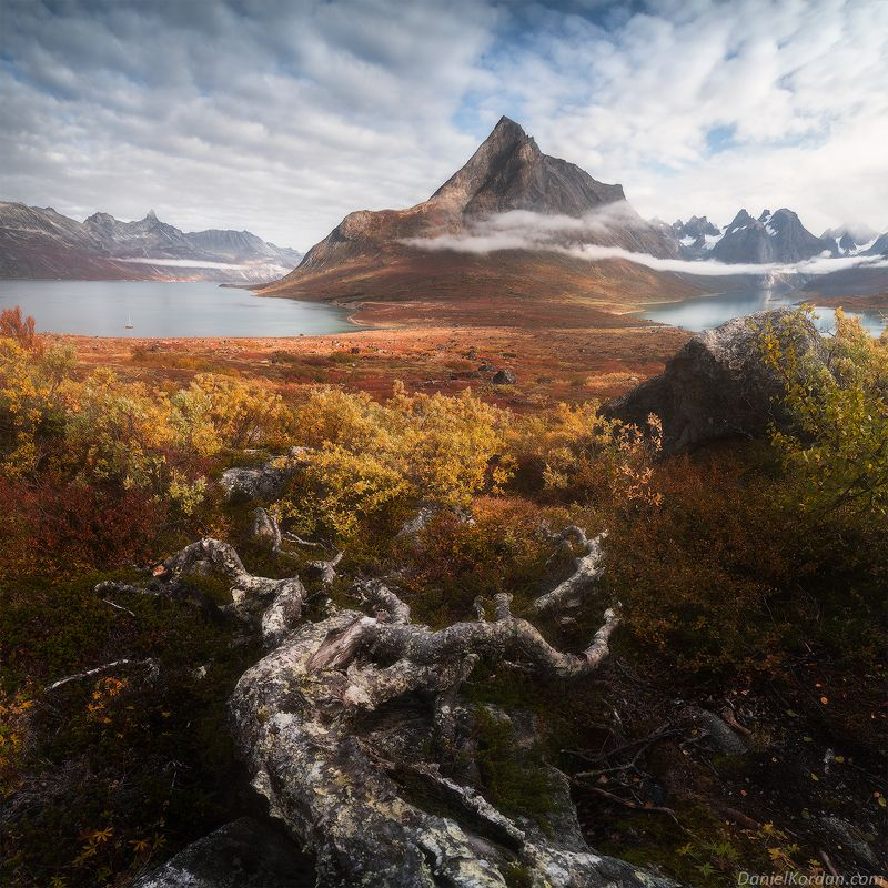 Гренландия Осенний ковер Арктикиphoto preview