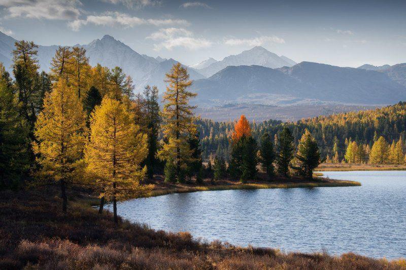 алтай, горы, осень, киделю Встречая деньphoto preview