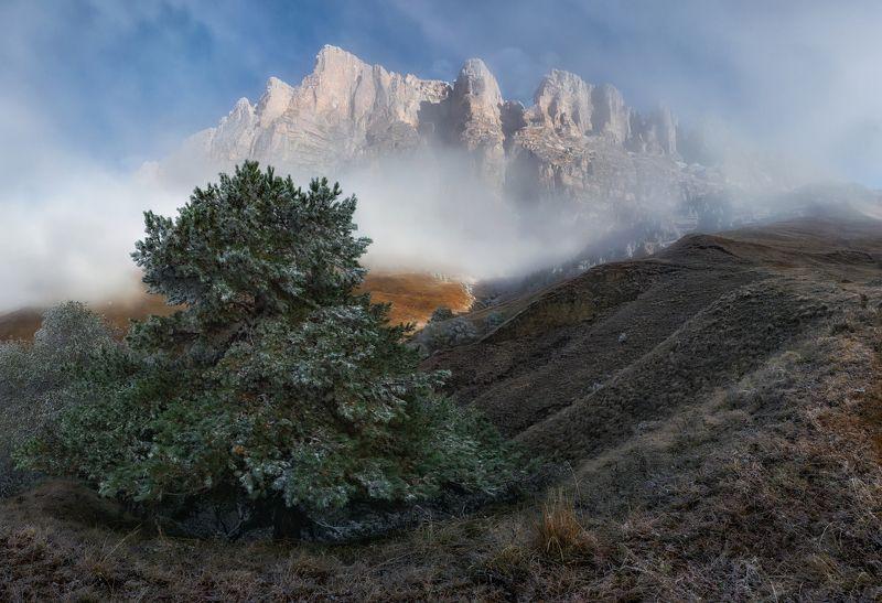 ингушетия, эрзи, кавказ Посеребрила осень горные луга.photo preview
