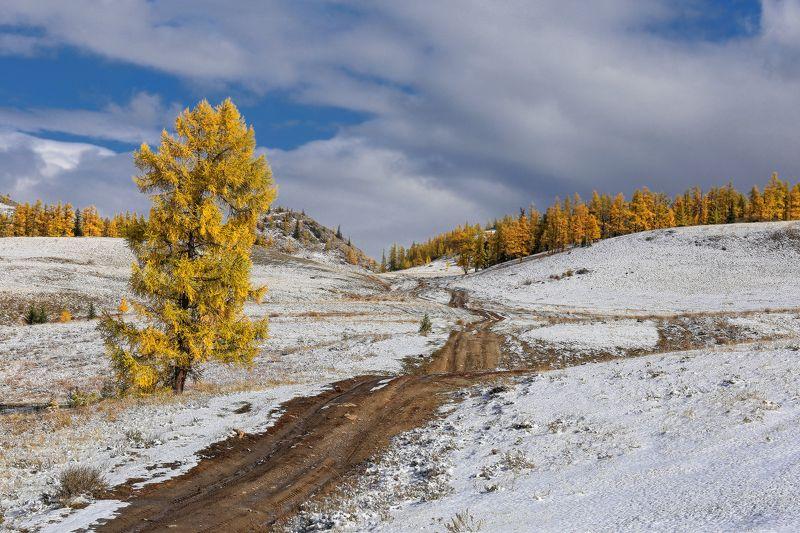 Осенняя зима или зимняя осень...photo preview