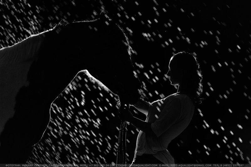 horse #михаилсеменов #фотографярославль #сертификат #подарок #фотослошадкой #аквалайт #свет #красота #модель #наездница #ночь #эквитерра Night for twophoto preview