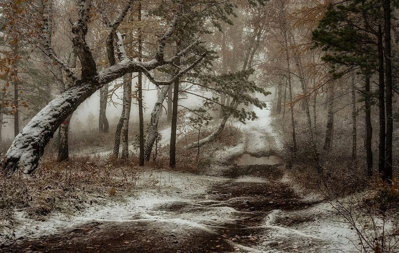 Осенний блюз.photo preview