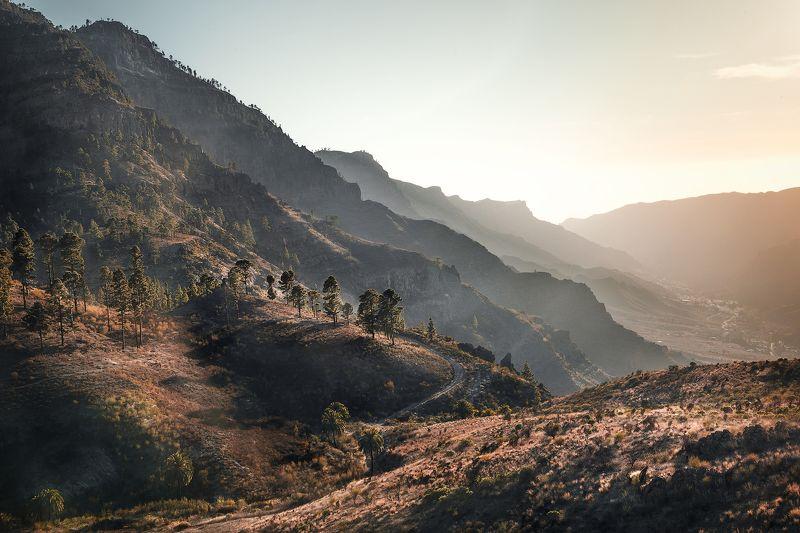 закат, горы, деревья, сосны, пальмы,свет, перспектива, канарские острова, лес *За горами горы*photo preview