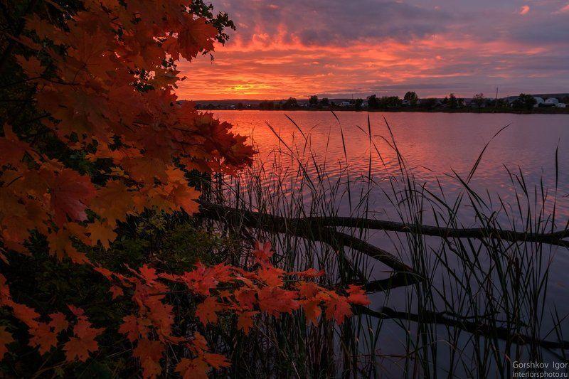 закат,озеро,осень,татарстан,вода,отражения,клён,листья,дерево,природа Осенний закатphoto preview