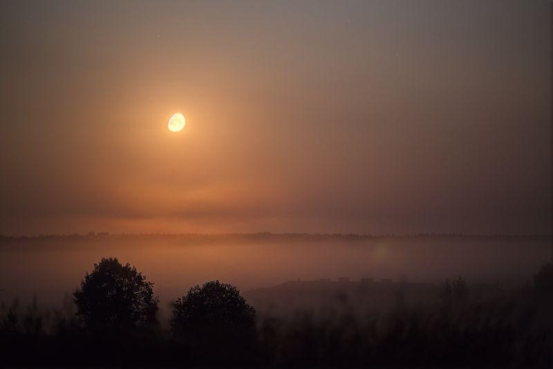 Песнь одинокой луныphoto preview
