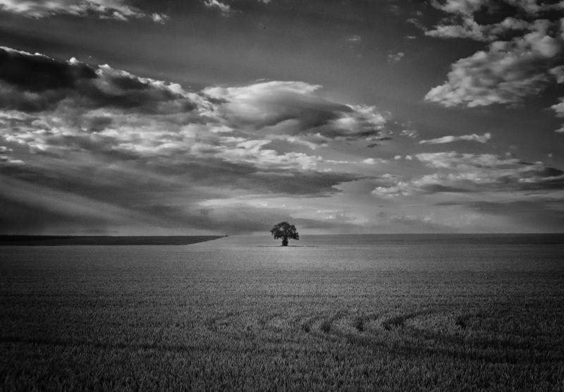 черно-белая фотография, пейзаж, закат Мгновеньеphoto preview