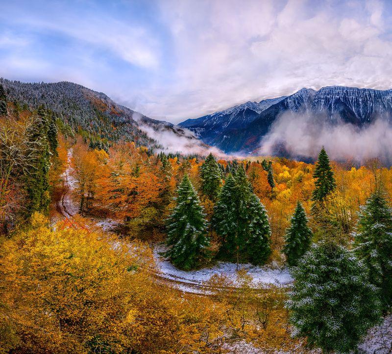 абхазия, рицинский национальный парк, пихты, осень, снег, долина реки, бзыбь, горы, вершины, лес, парк, заповедник, дорога. Реликтовый парк в Абхазииphoto preview