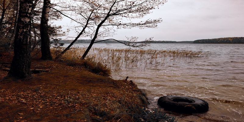 В холодной воде.photo preview