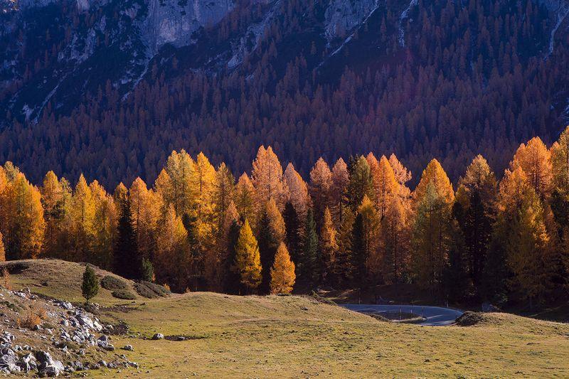 Альпийская осеньphoto preview