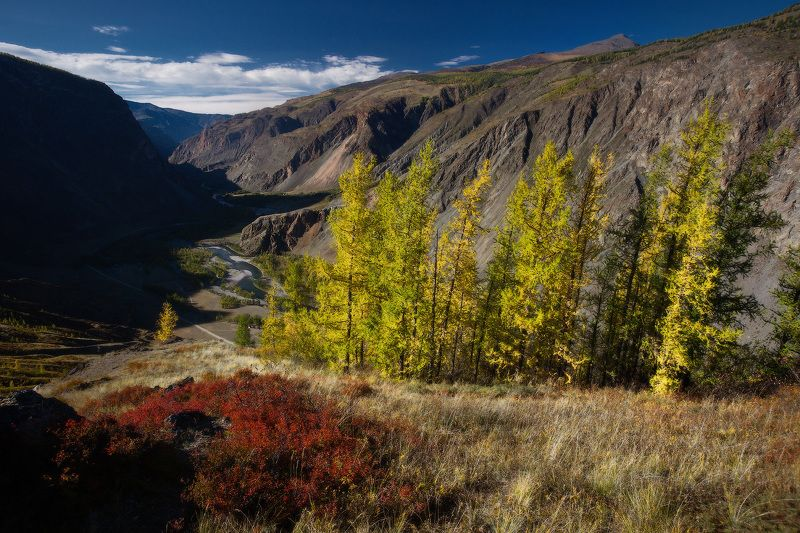 алтай, горы, осень, кату-ярык Кату-Ярыкphoto preview