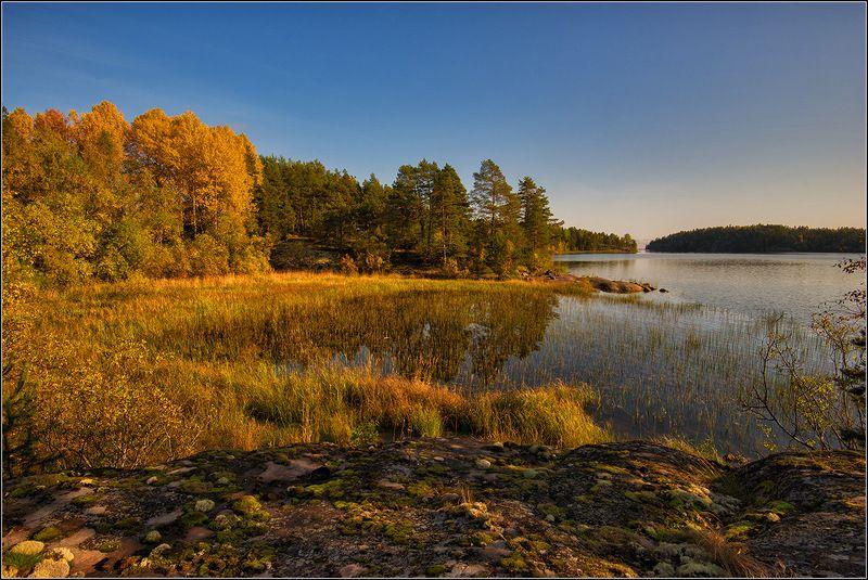карелия, ладожское озеро, осень *  *  *photo preview