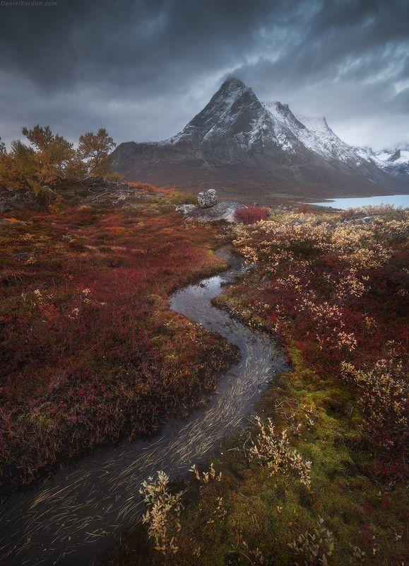 гренландия Арктический коверphoto preview