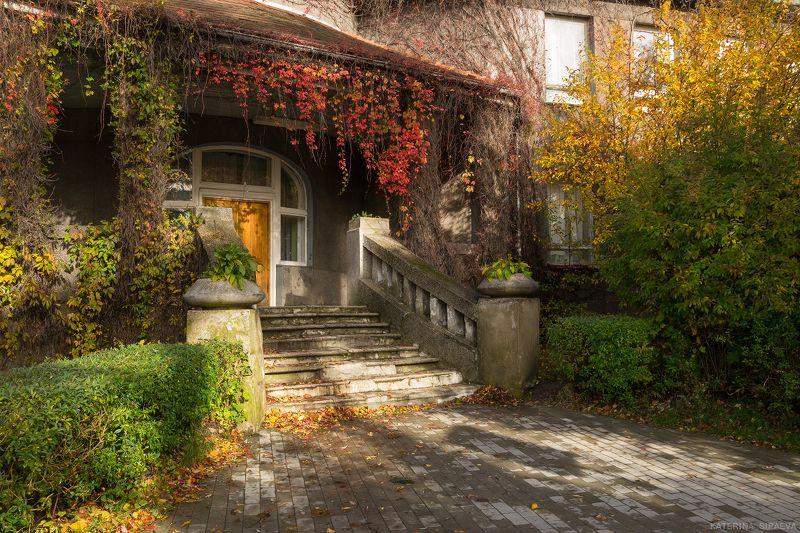 осень, архитектура Осени уютное убранствоphoto preview