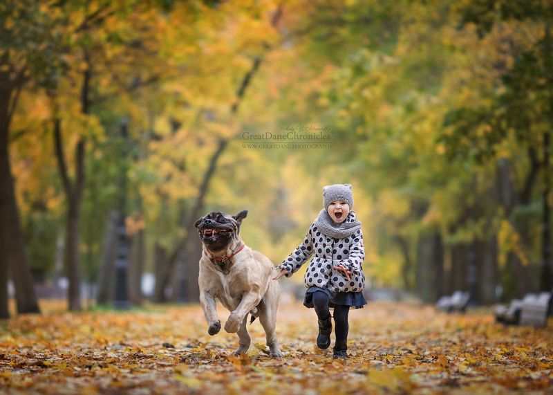 Every little girl needs a little puppy!photo preview