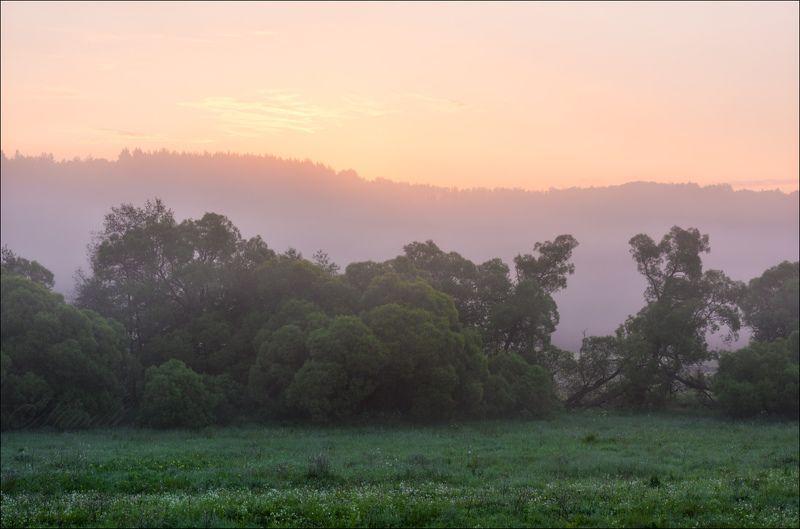 По утренним туманам июняphoto preview