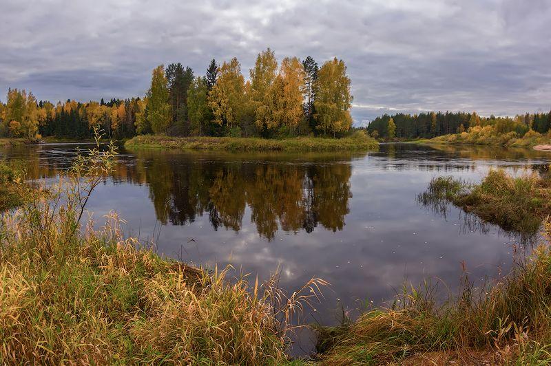 осень желтый река лес берег октябрь хмурая грустная  осень...)photo preview
