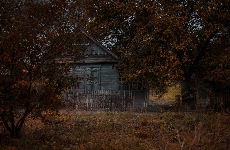 погостить бы у бабули .....только в доме света нет...... нет дорожки до крылечка.....потому что.......ее нет.... есть такие в жизни раны........и лечить их смысла нет..... приезжайте вы к бабуле.......пока есть в том доме свет . Забытое...photo preview