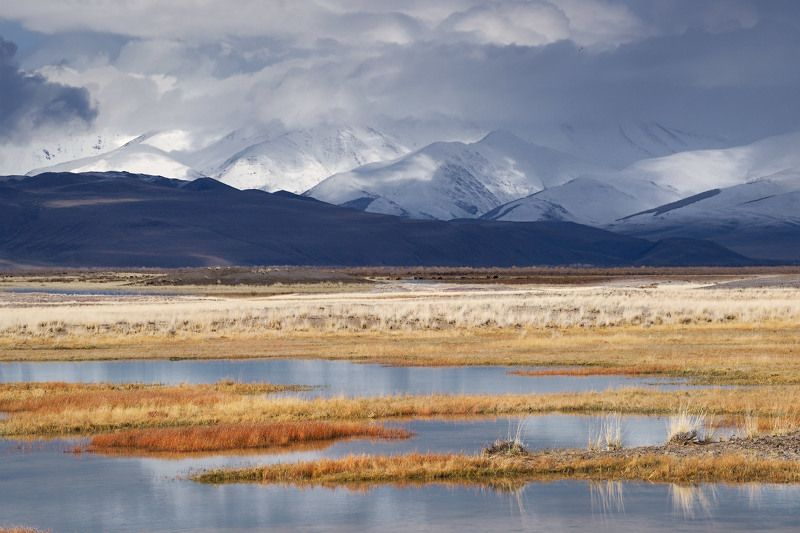 алтай, горы, осень, чуйскаястепь День в Чуйской степиphoto preview