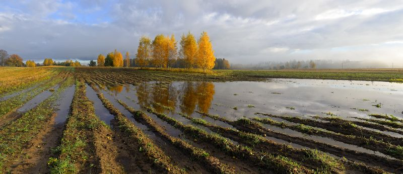 панорама пейзаж латвия осень рассвет поле Осень на селеphoto preview