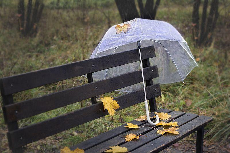 осень, дождь, зонт, скамейка, парк, осенние листья, кленовые листья, прозрачный зонт Дождливый день в парке...photo preview