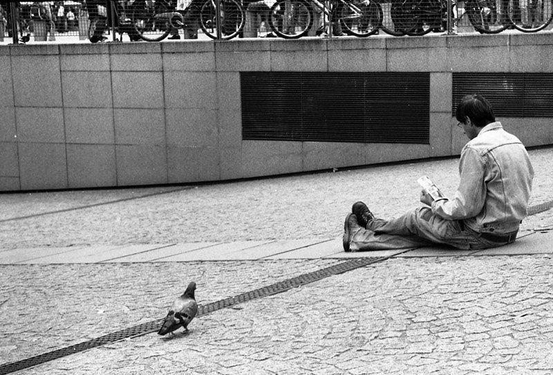 париж, город, человек, голубь двое в Парижеphoto preview